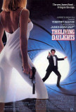 Living Daylights, The Poster