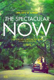 Spectacular Now, The Poster